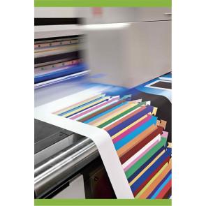 A2 - 42x59.4 cm Plakat print på semiblank 170my pp film