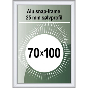Security Snapramme - 25mm Profil - (B1) 70x100cm - Alu