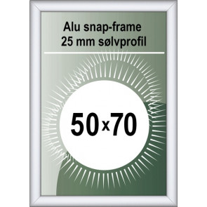 Security Snapramme - 25mm Profil - (B2) 50x70cm - Alu